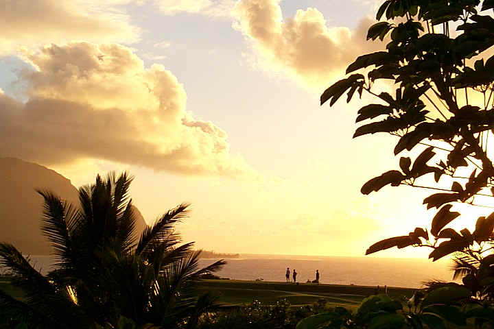 sunset-balihai-palms-beachocean.jpg